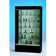 Wall Display Case
